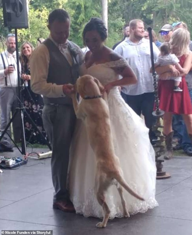 WATCH:  Dog Joins Owners For Their First Wedding Dance
