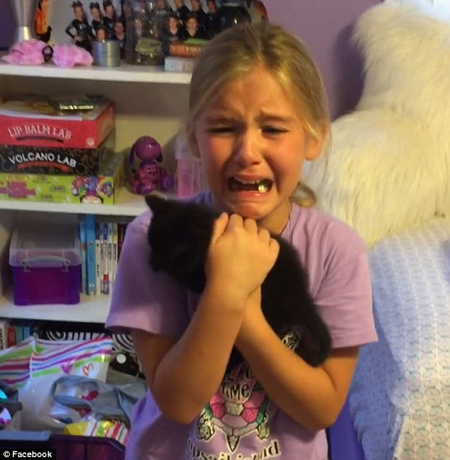 Little Girl Sobs When Mom Surprises Her With A Kitten