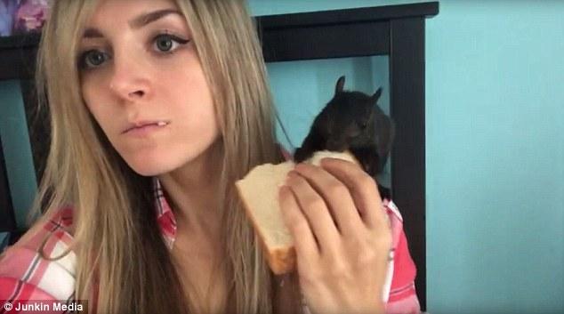 Squirrel Demands Bite Of Woman