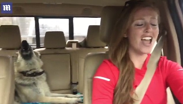 """Dog Sings While Her Owner Lip Syncs to """"We Are The Champions"""""""