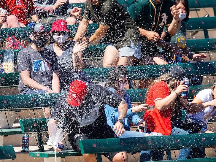 WATCH: MLB Player Rips Foul Ball Into Fan