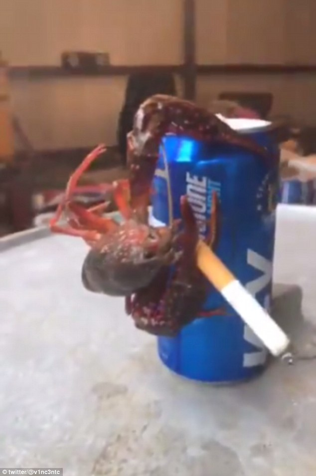 WATCH: Crawfish Hangs Onto A Can Of Beer & Smokes