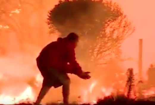 WATCH: Man Rescues Rabbit from California Fires