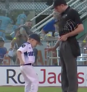 Kid Assistant Coach Has Mini Meltdown On Baseball Field
