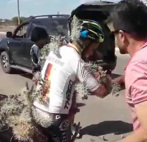 WATCH: Cyclist has Thousands of Cactus Spikes Pulled From his Body After Crashing into Bush
