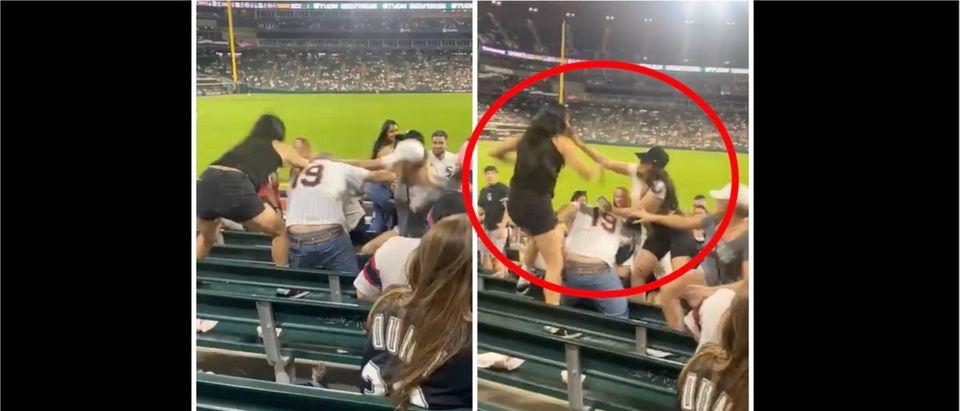 WATCH: Women Get Into an Absurd Brawl During Baseball Game